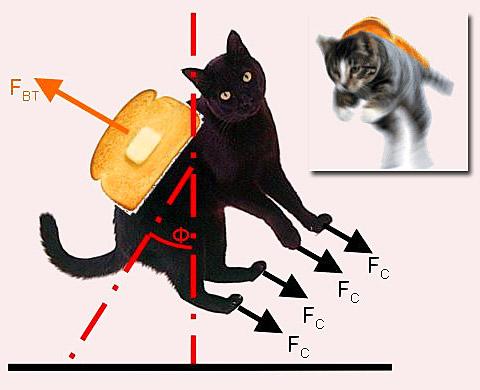 猫和涂黄油的面包组成的反重力机